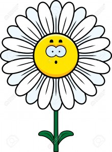 A cartoon illustration of a daisy looking surprised.