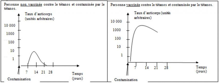 le principe de la vaccination svt 3eme