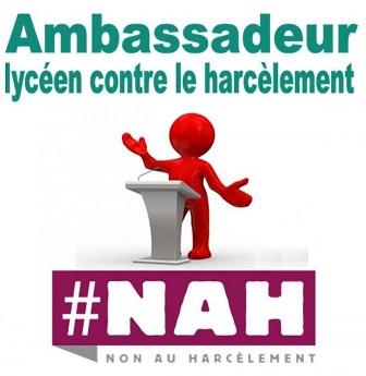 Formation des ambassadeurs lycéens contre le harcèlement – 2020